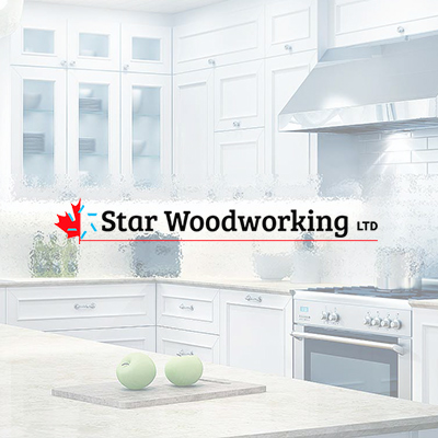 Web-design Toronto Seorepublic Star Woodworking